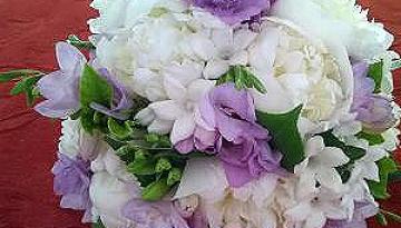 Cyprus Wedding Checklist